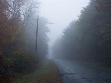 99 best foggy creepy place's I love to visit images on